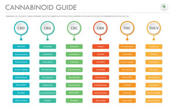 Cannabinoid guide